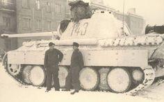 Winter Panther