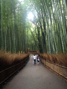 #lovers in japan