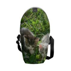 Sibs Chillin Courier Bag Pack Your Bags, Beautiful Bags, Bag Accessories, Purses And Bags, Kittens, Short Hair Styles, Camping, Touch, Handbags