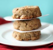 Fast Paleo » OMG Paleo Ginger Cookies - Paleo Recipe Sharing Site