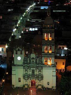Catedral de Monterrey by Drogdon