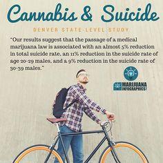 #dope #hemp #endthedrugwar #suicide  #ptsd #ganja #mmj  #drugpolicy #legalizeit #love #cannabis #stonermeme #cannabiscommunity #contentmarketing #picoftheday #smoke #weedstagram #420 #legalize #maryjane #weed #blunt #infographic #infographics #smoking #business #greenrush #pot#marijuanainfographics #weedhumor MarijuanaInfographics.com