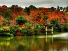 Jolies couleurs de l'automne