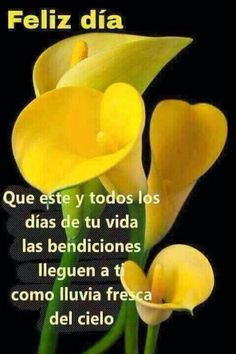 – Pin to pin Morning Greetings Quotes, Good Morning Messages, Good Morning Good Night, Morning Wish, Good Day Quotes, Good Morning Quotes, Quote Of The Day, Morning Thoughts, Hello In Spanish