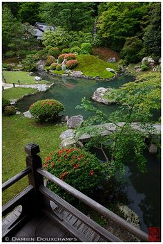 Zne garden with pond, Shoren-in temple
