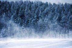 Snow and winter trekking to Seonjaryeong, Pyeongchang