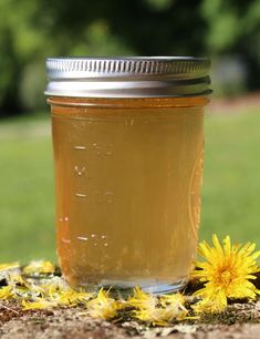 Scandinavian Dandelion Syrup Recipe Traditional Scandinavian Dandelion Syrup Recipe /not that I've ever heard of this.Traditional Scandinavian Dandelion Syrup Recipe /not that I've ever heard of this. Green Apple Syrup Recipe, Apple Syrup Recipe Canning, Herbal Remedies, Natural Remedies, Dandelion Recipes, Dandelion Flower, Dandelion Oil, Dandelion Jelly, Gastronomia