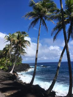 °My dream place . unfortunately only limited there. Big Island Hawaii, Strand, My Dream, Beach, Places, Water, Outdoor, Small Restaurants, Car Rental
