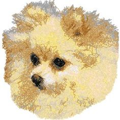 Pom Machine Embroidery Design in Photo Stitch Technique Advanced Embroidery, Photo Stitch, Pomeranian, Machine Embroidery Designs, Dog Breeds, Teddy Bear, Crafts, Animals, Art