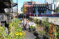 Time Circus, Welvaert, Antwerp, floating garden, vegetable garden, MAS Museum, Botanical, Eco Travel, Treehouses, Recycling / Compost, Green renovation, Gardening, Floating Houses,