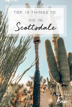 Traveling to Scottsdale? Check out this TOP 10 list of the most FUN things to do in Scottsdale, Arizona! You'll never want to leave. Cool Places To Visit, Places To Travel, Travel Destinations, Usa Travel Guide, Travel Usa, Travel Tips, Travel Plane, Airline Travel, Work Travel