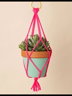 Hanging plant diy
