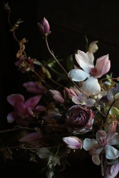 magnolia, perfect for a march wedding! by my friends at saipua! Deco Floral, Arte Floral, Floral Design, My Flower, Beautiful Flowers, Dark Flowers, Lavender Flowers, Beautiful Life, Autumn Flowers