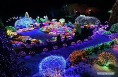 Garden of Morning Calm, South Korea - Bing Images Outdoor Christmas Decorations, Christmas Lights, Christmas And New Year, Christmas Holidays, Backyard Carnival, Cool Pictures, Beautiful Pictures, The Beautiful Country, Winter Wonder