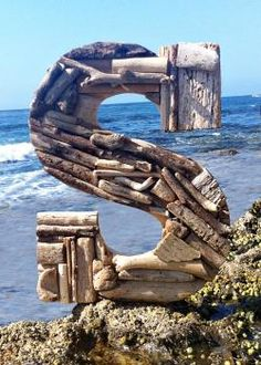 """Driftwood Letters from Daigle Daigle Blazer Coastal and KIm - The letter """"S"""" is the beginning of my first name! This must be a sign for me to go to the beach! Driftwood Projects, Driftwood Art, Diy Projects, Alphabet Photography, Hereford, Beach Signs, Letters And Numbers, Wood Letters, Letter Art"""