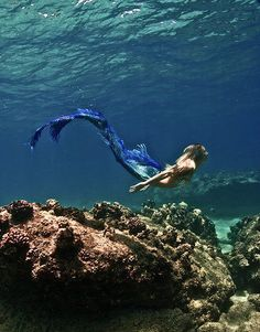 Amazing. I'd like to have been a mermaid. Sigh!