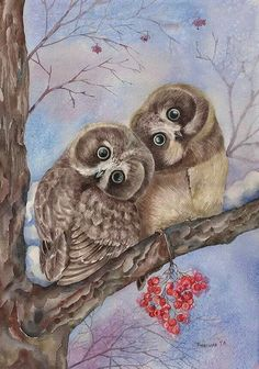 Owls in love ❣