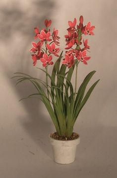 Cymbidium Double Orchid Red by Karl Blindheim