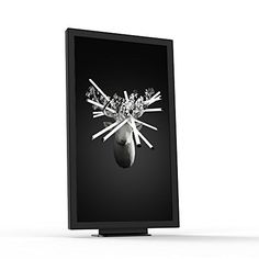 EO1 Digital Art Display, Black. Launched 2015, 1st Genera... https://www.amazon.com/dp/B00X98OMKE/ref=cm_sw_r_pi_dp_x_6h1hybCW4BTG7