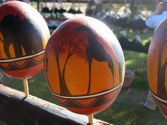 Painted ostrich eggs