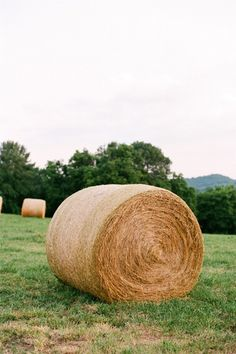 love the sight of hay bales in Southern fields | Mary Rosenbaum