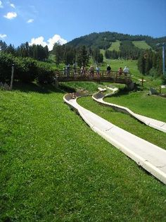 Alpine Slide at Snow