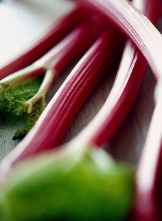 Con le coste rosse di questa pianta poco nota si preparano tante ricette dolci e salate. Da riscoprire insieme alle sue qualità digestive e alla sua storia antica e ricca di misteri