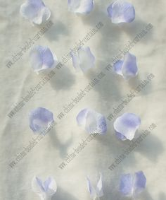 Google Image Result for http://www.china-beaded-curtain.com/ImgUpload/201105032053535353.jpg