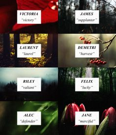 Twilight: James' Coven and Volturi name meanings Twilight Quotes, Twilight Book, Twilight James, Writing A Book, Writing Tips, Writing Prompts, Name Inspiration, Writing Inspiration, Unique Names