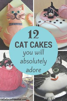 These 12 cakes are the cats meow! The perfect DIY birthday surprise for your best cat adoring friend.