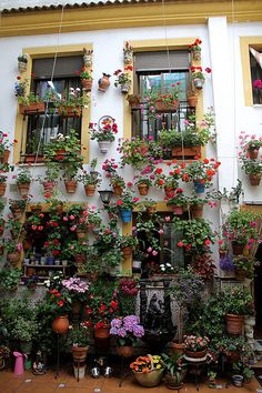 Patio cordobés. Un pequeño tour por Andalucía - El blog de Casaspain