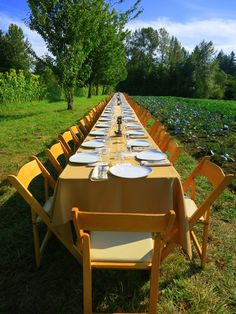 Farm to Fork Dinner. Have you ever gone to one? Read about what to expect here.