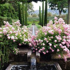 Vicki Archer's garden in France
