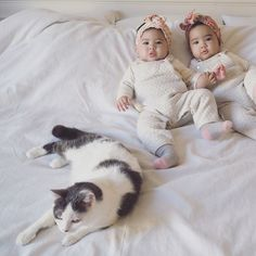 WEBSTA @chicoshigeta 3 Bout'chou 。 6ヶ月検診に行ってきました。生まれたては、2人ともおよそ2kgの体重で、2.3kgになるまで病院から退院させてもらえず、毎日10g増えたことに一喜一憂していました。 今回の検診ではぐら7kg、ぐり6.7kg 2人とも身長は67cm。(ねーちゃん3.3kg) 6ヶ月児の平均ど真ん中のサイズになった😳!