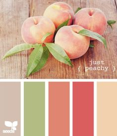 Ideas Bath Room Paint Colors Green Design Seeds For 2019 Peach Color Palettes, Color Schemes Colour Palettes, Kitchen Colour Schemes, Colour Pallete, Color Combos, Kitchen Colors, Peach Colors, Room Paint Colors, Paint Colors For Living Room