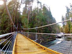 The Staircase Loop Bridge, Olympic National Park