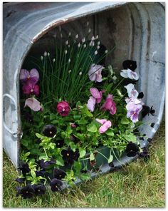 Pansies in galvanized tub turned on its side or use an old metal mailbox. Galvanized Planters, Garden Planters, Container Plants, Container Gardening, Wash Tubs, Deco Floral, Garden Styles, Yard Art, Pansies