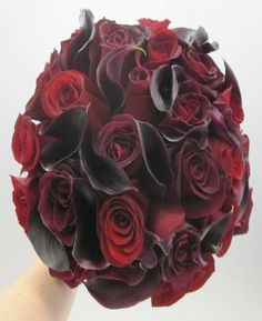 1c7e0cf9c54 It would pop against the white linen and tie in with dark blue napkins.  Freda · Black Magic Roses