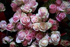 Floral Arrangements New Year's Concert 2015 with Zubin Mehta