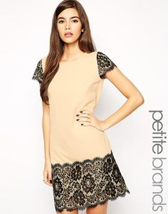 Paper Dolls Petite Lace Insert Shift Dress