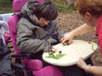 Inclusion in Forest Schools
