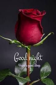 Good Night Images Wallpapers for Whatsapp Good Night Cards, Good Night Qoutes, Good Night Thoughts, Good Night Friends, Good Night Greetings, Good Night Messages, Good Night Wishes, Night Quotes, Good Night Beautiful
