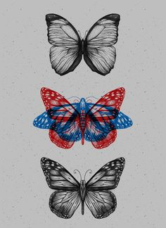 Butterfliez by Anderson Alves, via Behance Tattoo Drawings, Tattoo Sketches, Art Drawings, Fish Drawings, Small Tattoos, Tiny Tattoo, Photo Wall Collage, Piercing Tattoo, Future Tattoos