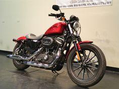 New 2012 Harley-Davidson Sportster 883 Iron For Sale Sportster 883 Iron, Harley Davidson Sportster 883, When I Grow Up, Bobber, Chopper, Motorbikes, Dream Cars, Motorcycles, Wheels