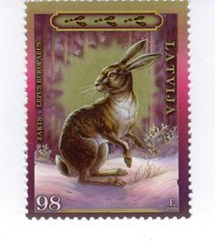 2009.gadā Latvijas Pasts izdeva pastmarkas ar vilka un zaķa attēliem. Zaķu dzimtas dzīvniekiem grūsnība ilgst 28 - 50 dienas. Ja pietiek barības, zaķu dzimtas dzīvnieki vairojas vairākas reizes gadā, tādējādi tie spēj ļoti ātri atjaunot vai palielināt populāciju.