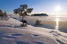 Winter sun in Finland, Kotka