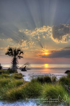Sunrise, Hunting Island, South Carolina