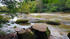 Neuse River. Wake County, NC