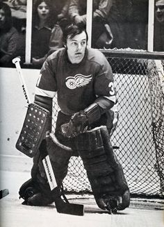Andy Brown with the Red Wings.