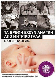 www.ibfan.gr